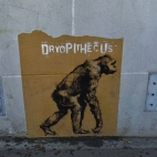 Another of the 'Descent of man' paste-ups for Brest, France.